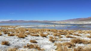 San Pedro de atacama - Uyuni, altiplano