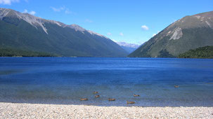 Nelson Lakes National Park, Lake Rotoiti