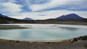 Laguna Honda, altiplano, Bolivia
