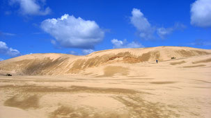 Giant Sand Dunes, Ninety Mile Beach