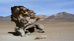 Arbol de Piedra, Stone tree, Desierto salvador dali, altiplano