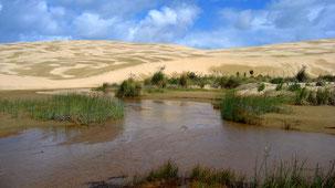 Giant Sand Dunes, Ninety Mile Beach
