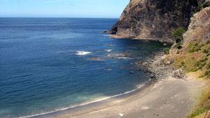 Coastline North Island