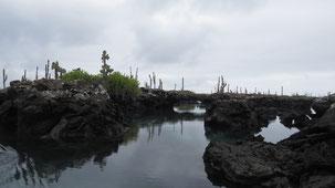 Los Tuneles, Isla Isabela