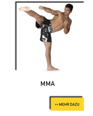 MMA in Mayen | MMA in Neuwied