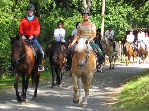 Reiterferien in Hessen