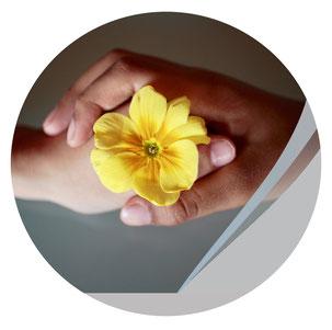zwei Hände halten eine Blume, Zusammenarbeit Webseiten-Tag Jungo-Grafik