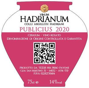 MAG Lifestyle Magazin Vinum Kulinarik italienischer Wein Rose Rosewein Amphoren Weinspezialtäten Italien Weingut Vinum Hadrianum Winzer Piero Pavone Atri Abruzzen