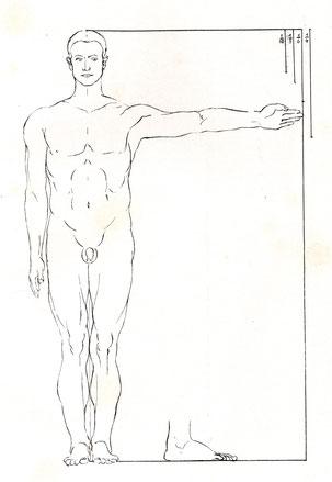 (Bild 11) Illustration aus: Josef Giesen, Dürers Proportionsstudien im Rahmen der allgemeinen Proportionsentwicklung, Bonn 1930, Tafel I.1