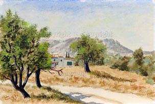 Nr.2083  Sonnige Landschaft in der Provence