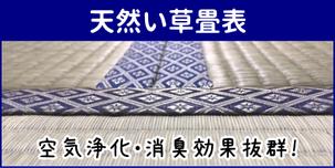 横浜市港南区の畳屋さん 内藤畳店の取り扱い商品 天然い草畳表