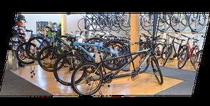 Sauter Hundersingen Fahrräder