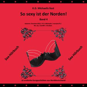 Sex-Hörbuch: So sexy ist der Norden! Band 4 von K.D. Michaelis