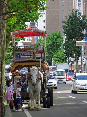 In Sapporo kann man sich mit einem PS durch die Stadt fahren lassen.