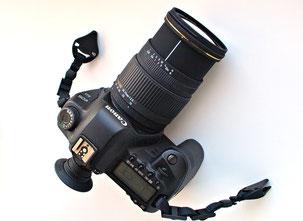Sigma AF 28-70/2.8 EX DG
