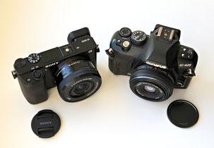 Sony E 16-50/3.5-5.6 OSS
