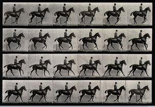 E.M.: A cantering horse and rider, 1887, Wellcome Library, educational project