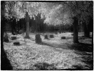 il Cimitero di Bachelo's Grove