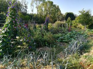 table de jardin sous un arbre : jardin du moulin cheneche