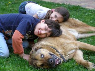 Zufriedener Schäferhund, als Schulhund zusammen mit zwei glücklichen Kindern, die ihn umarmen.