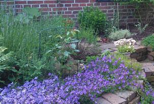 Gartenpflege und -gestaltung - Staudenbeet mit angelegter Treppe aus Klinkersteinen