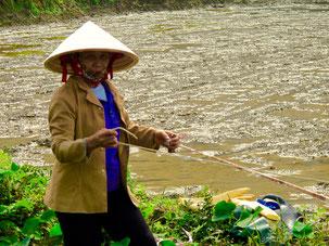 die Frauen leisten die Hauptarbeit auf den Feldern