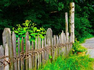 ein interessant zusammengesteckter Holzzaun