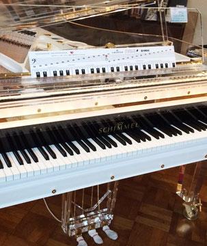 Klavierhaus Förstl Schimmel