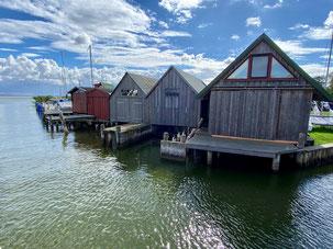 Bild: Hafen Ahrenshoop