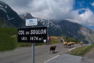 Cols Pyrénées tour de france gîte Casa Bonita et FTC SPORT