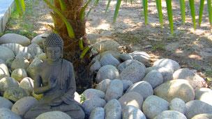 Vacances zen au gîte les Oliviers