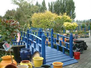 池にかかった橋 このガーデンセンターのテーマカラーのブルーで作られている