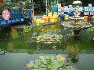 ガーデンセンターの中に整備された池