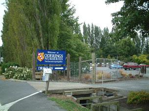 ニュージーランドのガーデンセンター