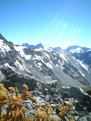絶景のマウント・クック山頂景 最高です!!