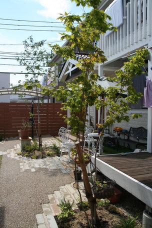 デッキの方からみたお庭。アプローチがどこだか分からないほど一体化している。
