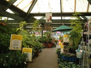 ガーデンセンターの中 日本とあまり変わらない?