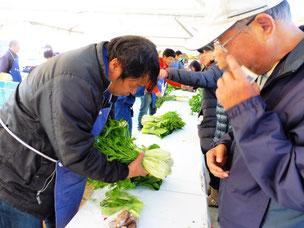 生産者の心のこもった野菜を手から手へ