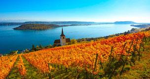 Photographies panoramiques effectuées par le photographe en vin.