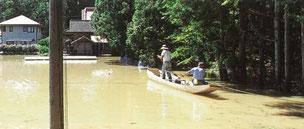 平成14年水害時の藤沢黄海地区の浸水状況