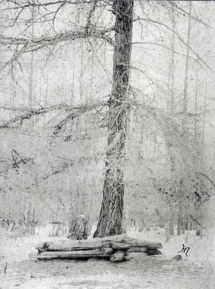 Старинное шаманское погребение (И.В. Попов)