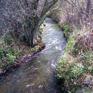 Camí de l'aigua de Bolvir - Riu