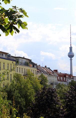 Blick von oben von der grünen Hochfläche am Wasserturm auf Häuserfronten Kollwitz-Kiez und Fernsehturm. Foto: Helga Karl
