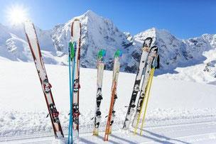 Ski und Bergpanorama