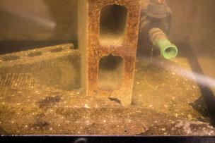 水換え不要の生簀、ヒラメ活魚水槽。