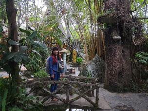 Crazy Houses Da Lat Vietnam