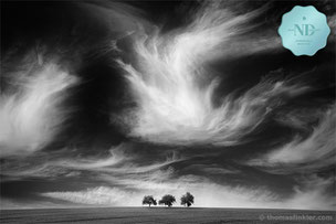 Monochrome photography, fine art, awarded, award winning, nature, landscape, clouds, cloudscape, trees, dramatic, prints, for sale