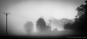 Fine art photography, art photography, photographic art, black and white, nature, landscape, minimal, trees, misty, foggy