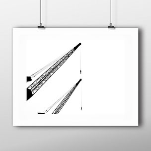 Photographic Art Print 'Elegant Cranes' by PASiNGA