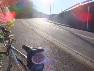 三浦うみかぜレンタバイク ロードバイク レンタル